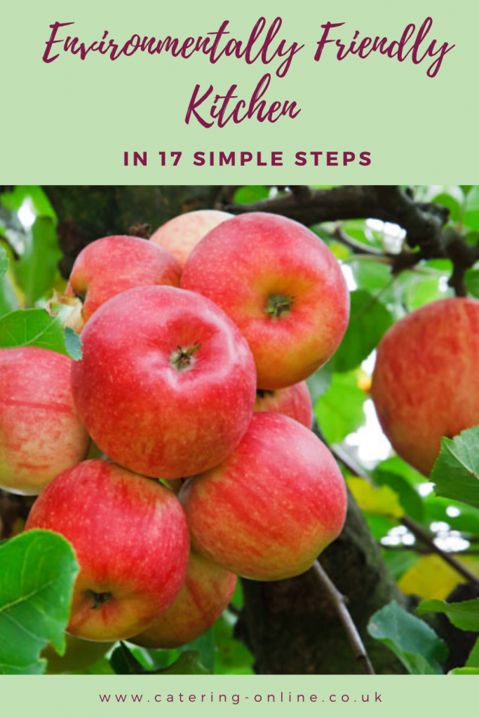 Environmentally Friendly Kitchen in 17 Simple Steps Blog Pin
