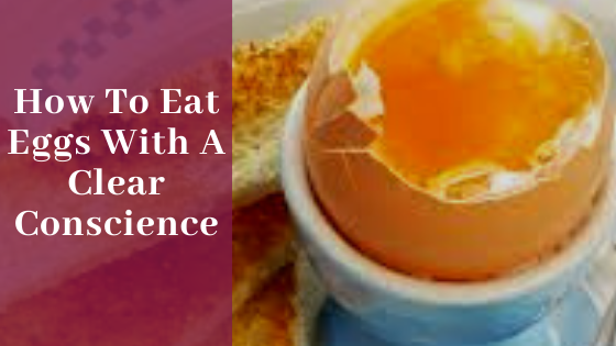 Our eco-friendly kitchen - how to eat eggs with a clear conscience